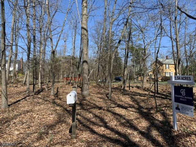 1835 Mountain Top Rd, Bridgewater Twp., NJ 08807 (MLS #3701705) :: The Michele Klug Team | Keller Williams Towne Square Realty