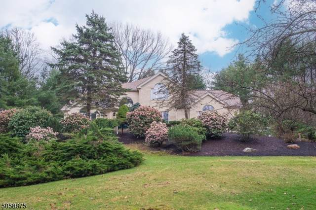 3 Brentwood Ln, Denville Twp., NJ 07834 (MLS #3702098) :: Pina Nazario