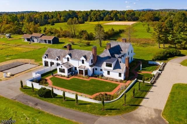 2 Aleksandra Lane, Bedminster Twp., NJ 07921 (MLS #3702171) :: Kiliszek Real Estate Experts