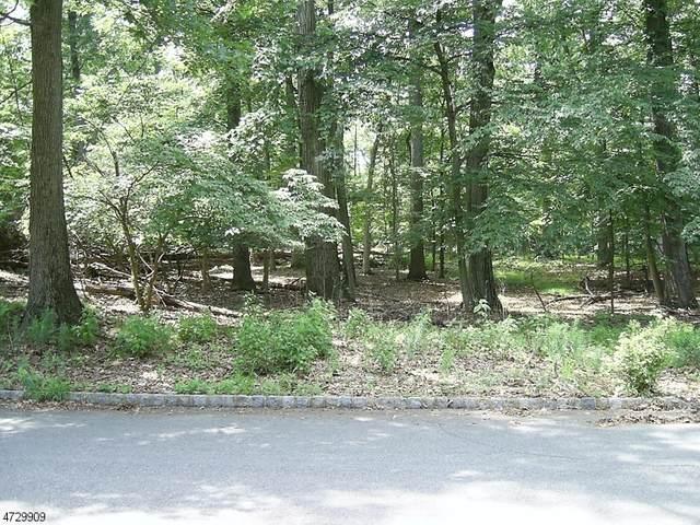 177 Deer Run, Green Brook Twp., NJ 07069 (MLS #3702177) :: Gold Standard Realty