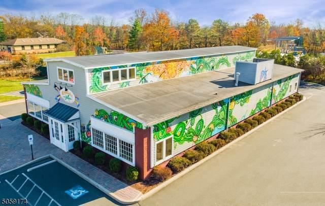 42 Highway 12, Flemington Boro, NJ 08822 (MLS #3702293) :: SR Real Estate Group