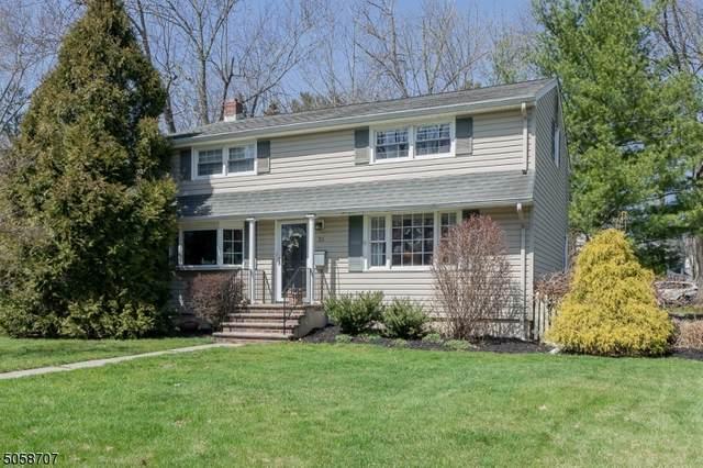 20 Barberry Ln, New Providence Boro, NJ 07974 (MLS #3703008) :: The Dekanski Home Selling Team