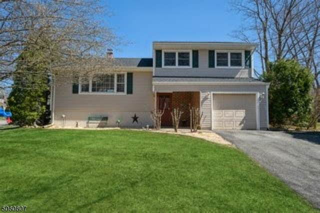 14 Beekmeer Place, Mount Olive Twp., NJ 07836 (MLS #3703034) :: Corcoran Baer & McIntosh
