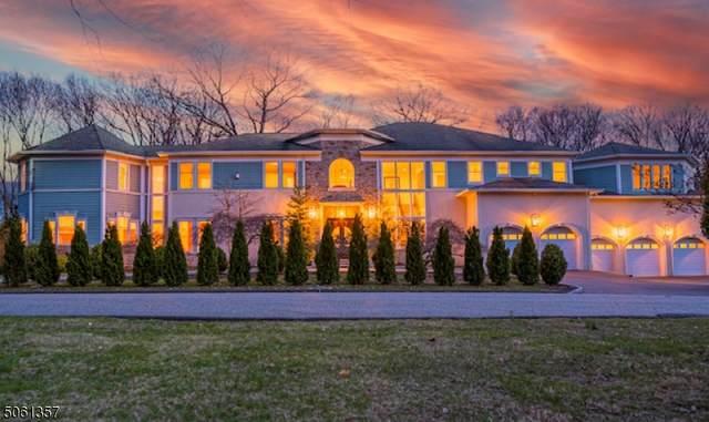 5 Poinsetta Ct, Kinnelon Boro, NJ 07405 (MLS #3703310) :: SR Real Estate Group
