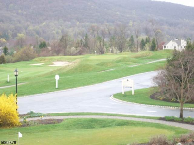 3 Wild Turkey Way #447, Hardyston Twp., NJ 07419 (#3704255) :: Jason Freeby Group at Keller Williams Real Estate