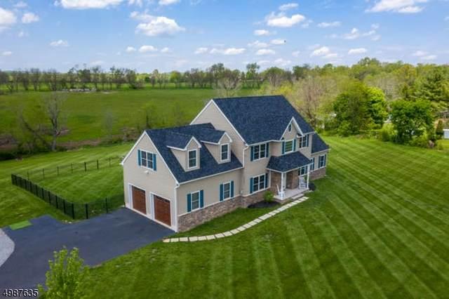 183 Old York Rd, Raritan Twp., NJ 08551 (MLS #3705559) :: SR Real Estate Group