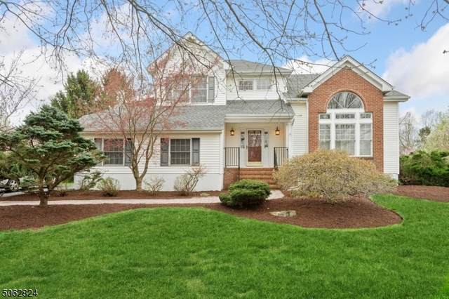 3 Carousel Chase, Montgomery Twp., NJ 08502 (MLS #3705632) :: SR Real Estate Group