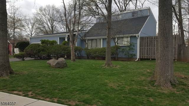 30 Birch Run Dr, Piscataway Twp., NJ 08854 (MLS #3705713) :: SR Real Estate Group