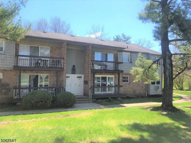 530 Andria Ave   Apt 293 #293, Hillsborough Twp., NJ 08844 (MLS #3705747) :: SR Real Estate Group