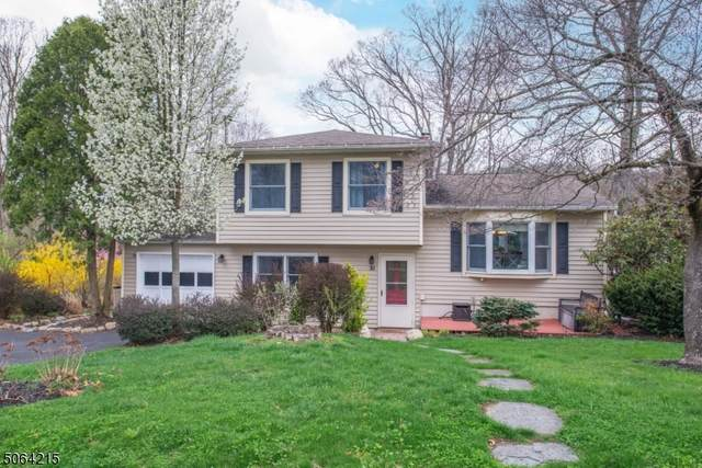 30 Young Dr, Stanhope Boro, NJ 07874 (MLS #3705828) :: Zebaida Group at Keller Williams Realty
