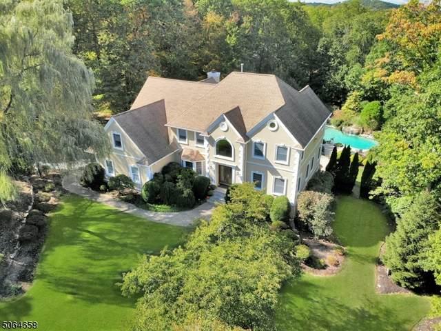 25 Denise Dr, Kinnelon Boro, NJ 07405 (MLS #3706227) :: SR Real Estate Group