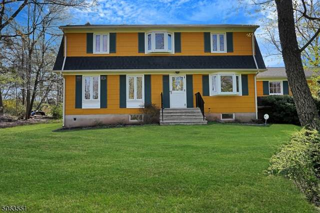 600 Meadow Rd, Bridgewater Twp., NJ 08807 (MLS #3706508) :: Weichert Realtors