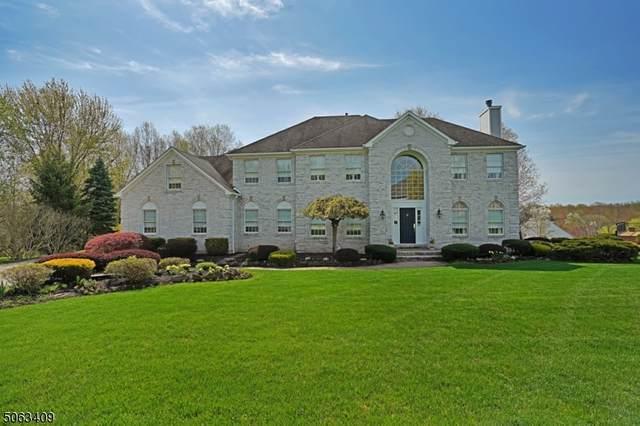 31 Joss Way, Long Hill Twp., NJ 07946 (MLS #3706557) :: REMAX Platinum