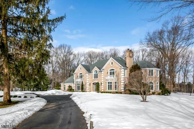 380 Crescent Dr, Franklin Lakes Boro, NJ 07417 (MLS #3706626) :: Weichert Realtors