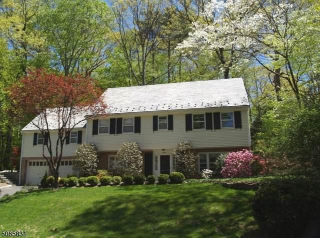 304 Forest Dr S, Millburn Twp., NJ 07078 (MLS #3707374) :: The Sue Adler Team