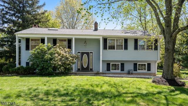 3 Green Avenue, Montgomery Twp., NJ 08502 (MLS #3708136) :: Zebaida Group at Keller Williams Realty