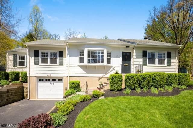 12 Overlook Trl, Morris Plains Boro, NJ 07950 (MLS #3708174) :: SR Real Estate Group