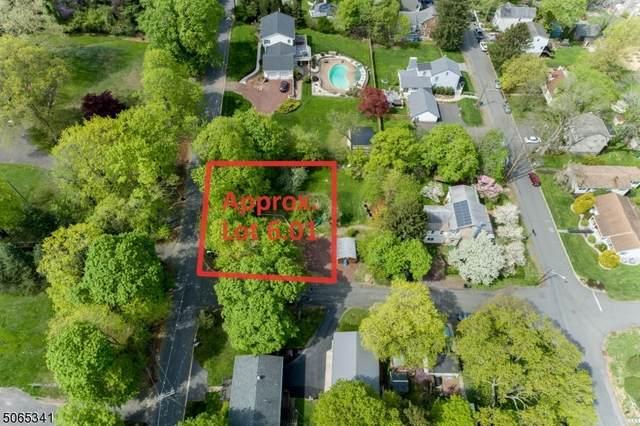 64 Highland Ave, Lambertville City, NJ 08530 (MLS #3708798) :: Coldwell Banker Residential Brokerage