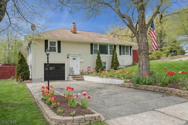 108 Lake Ave, Newton Town, NJ 07860 (MLS #3709018) :: Corcoran Baer & McIntosh