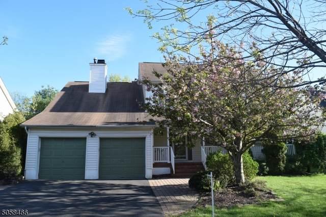 8 Pitcher Way, Hillsborough Twp., NJ 08844 (MLS #3709164) :: SR Real Estate Group