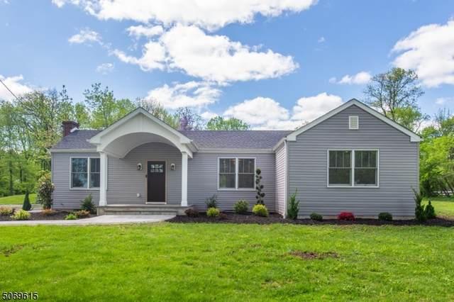485 Route 518, Montgomery Twp., NJ 08558 (MLS #3710648) :: Stonybrook Realty
