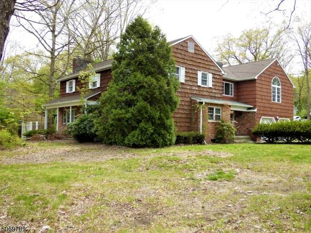 19 Dover Milton Rd, Jefferson Twp., NJ 07438 (MLS #3710718) :: The Sikora Group