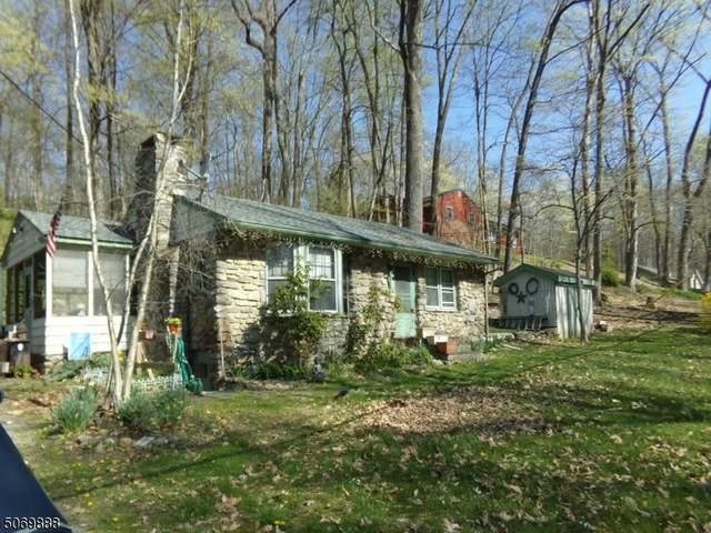 923 Ridge Rd, Stillwater Twp., NJ 07860 (#3710817) :: Rowack Real Estate Team