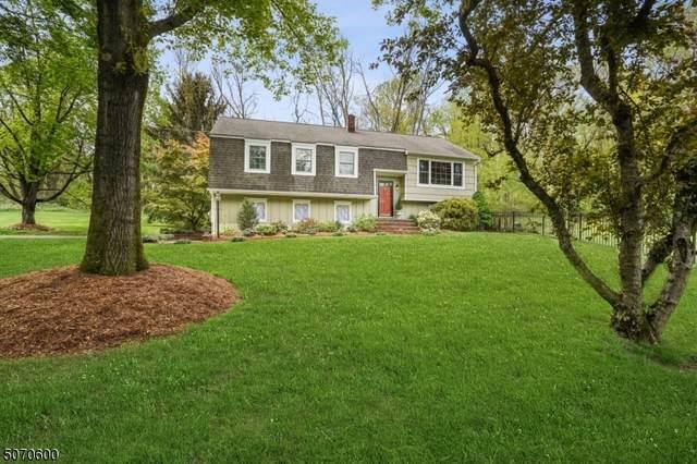 1 Mile Dr, Chester Twp., NJ 07930 (MLS #3711379) :: SR Real Estate Group