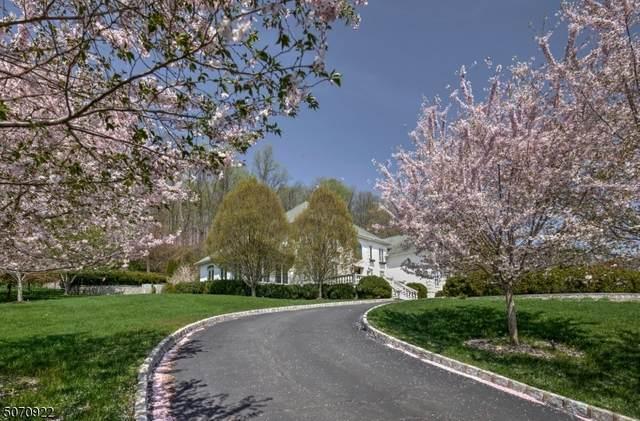 3 Deer Hill Rd, Chester Twp., NJ 07930 (#3711669) :: Jason Freeby Group at Keller Williams Real Estate