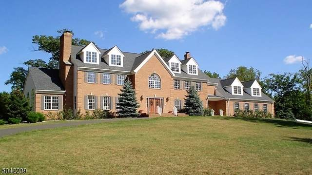 370 Dutchtown Zion Rd, Hillsborough Twp., NJ 08844 (MLS #3711921) :: The Sue Adler Team