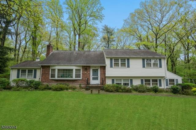 35 Hector Rd, Parsippany-Troy Hills Twp., NJ 07950 (MLS #3711962) :: SR Real Estate Group