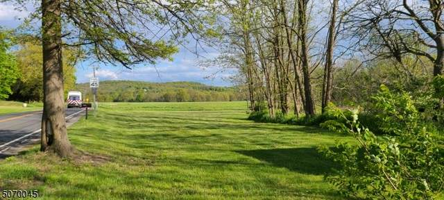 0 Route 565, Wantage Twp., NJ 07461 (MLS #3712164) :: Caitlyn Mulligan with RE/MAX Revolution