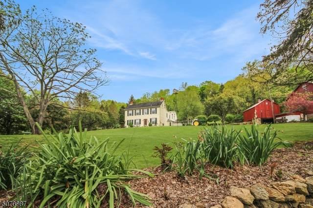 260 Creek Rd, Pohatcong Twp., NJ 08865 (#3712288) :: Jason Freeby Group at Keller Williams Real Estate