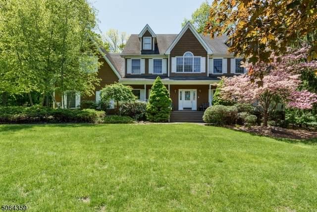 8 Smock Ct, Montville Twp., NJ 07082 (MLS #3712322) :: Coldwell Banker Residential Brokerage