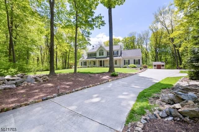 5 Michaels Court, Bethlehem Twp., NJ 08802 (#3712466) :: Jason Freeby Group at Keller Williams Real Estate