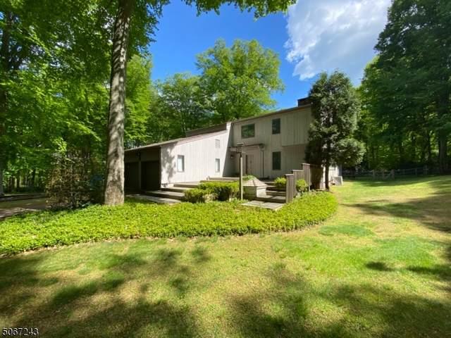 14 Tara Way, Franklin Twp., NJ 08867 (#3712566) :: Jason Freeby Group at Keller Williams Real Estate