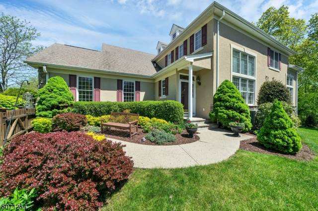 19 Young Ct, Chester Twp., NJ 07930 (MLS #3712584) :: SR Real Estate Group