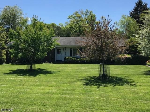 116 Agnes Pl, Bound Brook Boro, NJ 08805 (#3712612) :: Jason Freeby Group at Keller Williams Real Estate