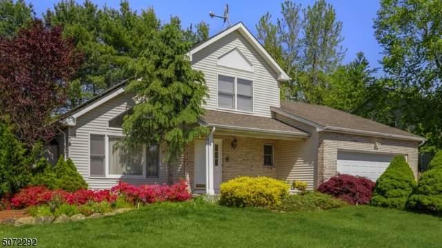 9 Maureen Rd, East Hanover Twp., NJ 07936 (MLS #3712962) :: SR Real Estate Group