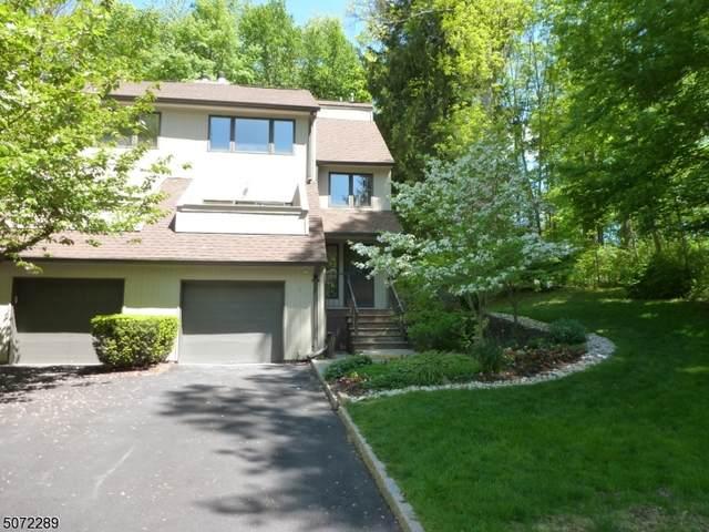 3 Newcastle Ct, Mountain Lakes Boro, NJ 07046 (MLS #3713145) :: SR Real Estate Group