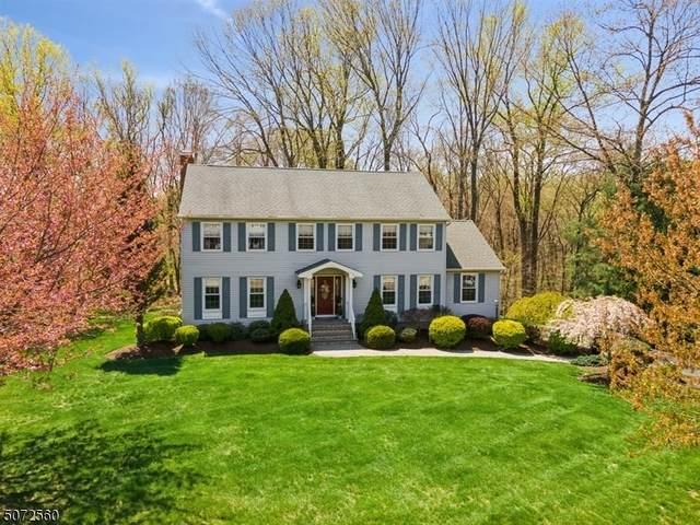 21 Nina Pl, Randolph Twp., NJ 07869 (MLS #3713284) :: SR Real Estate Group