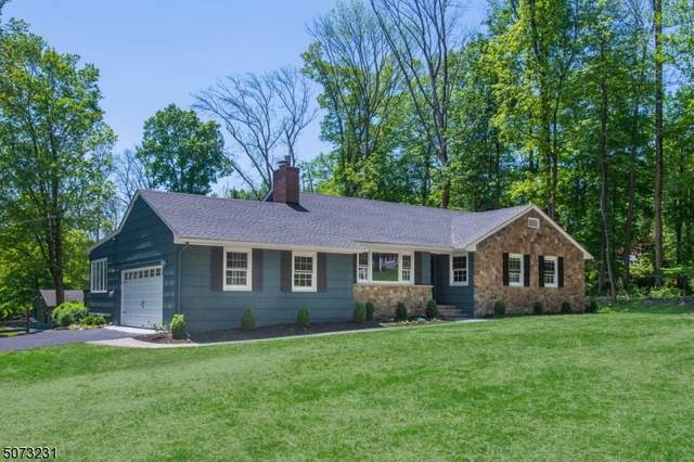 3 Locust Dr, Chester Twp., NJ 07930 (MLS #3713815) :: Kiliszek Real Estate Experts