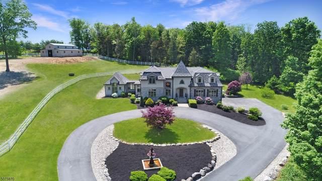 472 Delaware Rd, Hope Twp., NJ 07825 (MLS #3714563) :: Team Francesco/Christie's International Real Estate