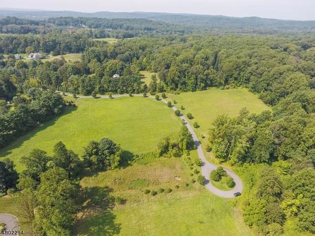 11 Pine Field, Harding Twp., NJ 07960 (MLS #3714829) :: Stonybrook Realty