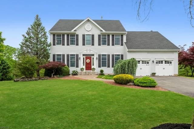59 Blue Grass Blvd, Branchburg Twp., NJ 08876 (MLS #3715530) :: Corcoran Baer & McIntosh