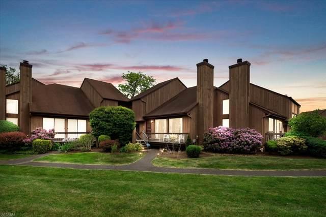 112 Bluebird Dr 4D, Hillsborough Twp., NJ 08844 (#3715656) :: Rowack Real Estate Team