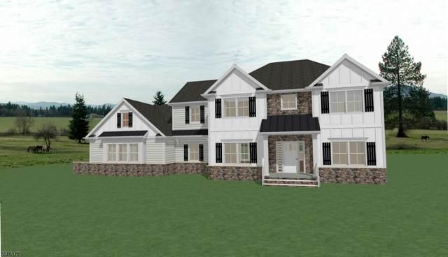 5 Marshalls Rd, Kingwood Twp., NJ 08825 (MLS #3716273) :: Pina Nazario