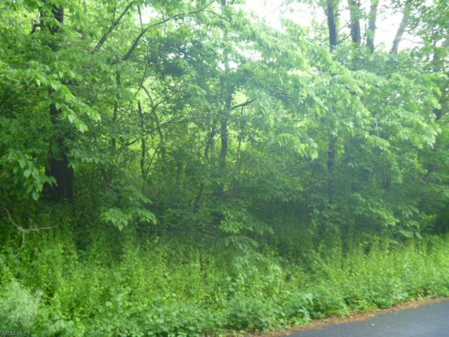 12 Cleveland Rd, Blairstown Twp., NJ 07832 (MLS #3716452) :: SR Real Estate Group