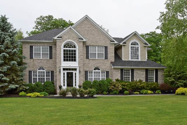 41 Saunders Ln, Mount Olive Twp., NJ 07840 (#3716789) :: Rowack Real Estate Team