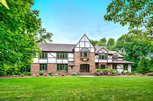 52 Big Spring Rd, Tewksbury Twp., NJ 07830 (MLS #3717322) :: Zebaida Group at Keller Williams Realty